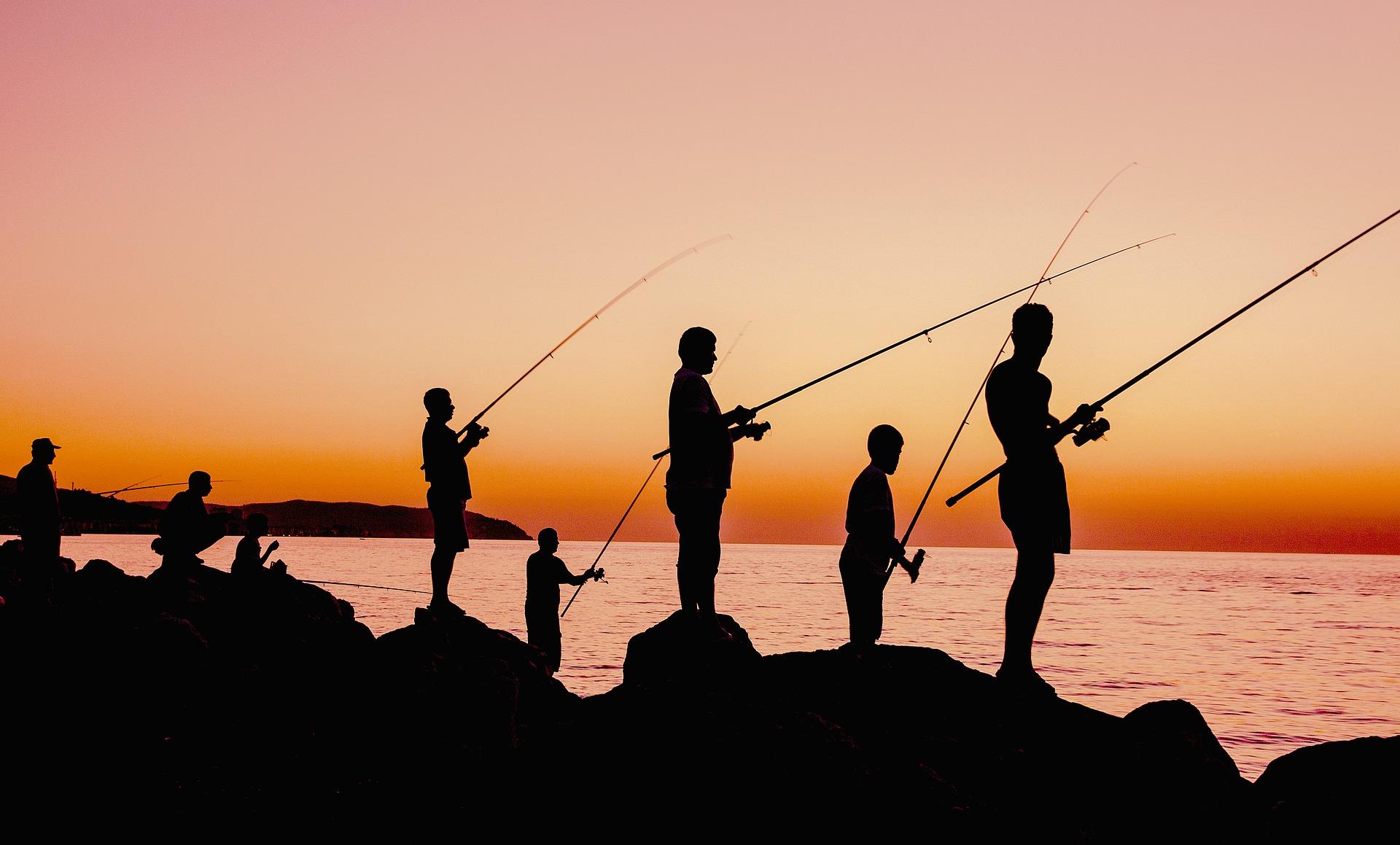 Fir intins - Club de pescuit